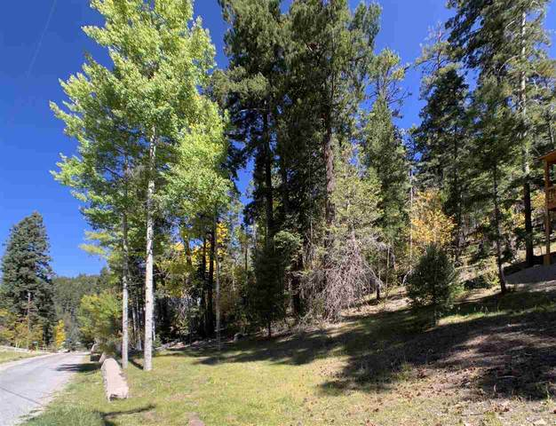 500 Woodlands Way #3, Cloudcroft, NM 88317 (MLS #163545) :: Assist-2-Sell Buyers and Sellers Preferred Realty