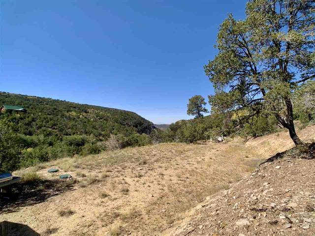 4 Old Ranger Rd, High Rolls Mountain Park, NM 88325 (MLS #163569) :: Assist-2-Sell Buyers and Sellers Preferred Realty