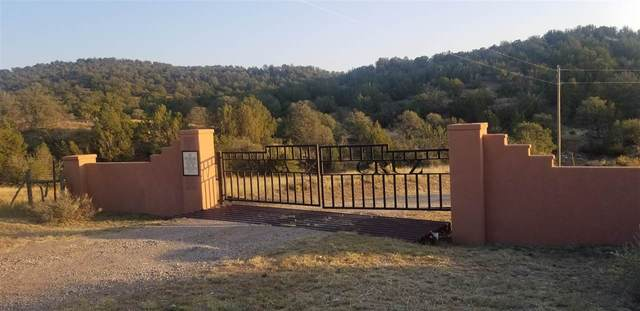 Address Not Published, nogal, NM 88341 (MLS #163601) :: Assist-2-Sell Buyers and Sellers Preferred Realty