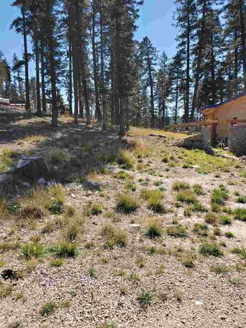 1406 Rainmaker Lp, Cloudcroft, NM 88317 (MLS #163622) :: Assist-2-Sell Buyers and Sellers Preferred Realty