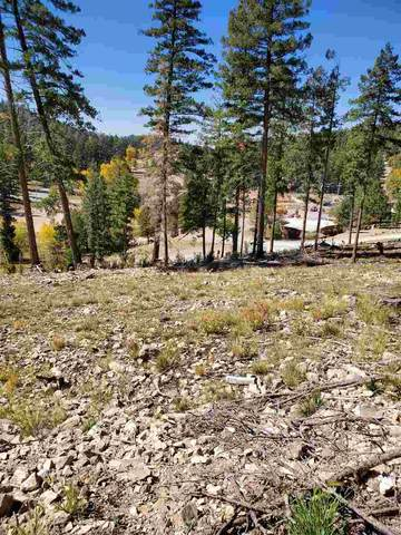 1512 Rainmaker Lp, Cloudcroft, NM 88317 (MLS #163623) :: Assist-2-Sell Buyers and Sellers Preferred Realty
