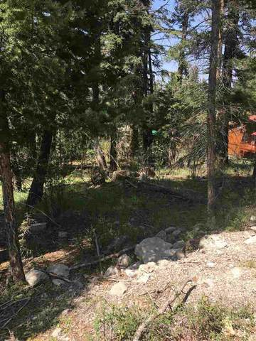 1001 Woodlands Way, Cloudcroft, NM 88317 (MLS #163671) :: Assist-2-Sell Buyers and Sellers Preferred Realty
