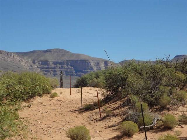 56 acres Roberts Rd, Alamogordo, NM 88310 (MLS #163698) :: Assist-2-Sell Buyers and Sellers Preferred Realty