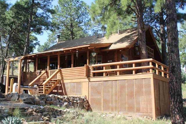 98 Buckwood Rd T7, Timberon, NM 88350 (MLS #163735) :: Assist-2-Sell Buyers and Sellers Preferred Realty