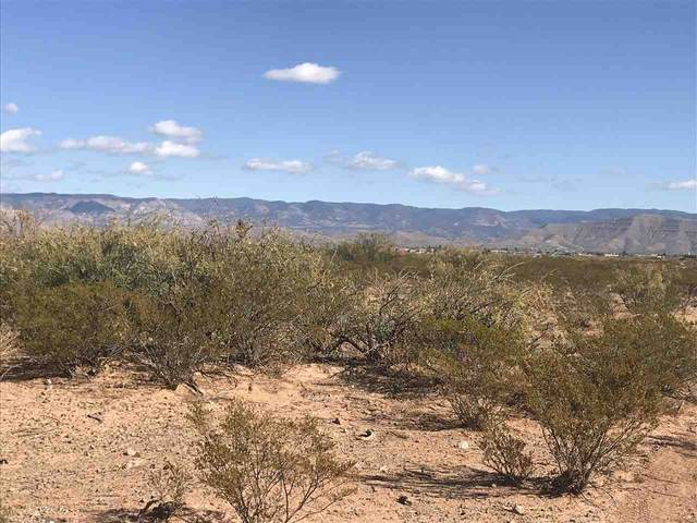 Danley Ranch Rd, Alamogordo, NM 88310 (MLS #163749) :: Assist-2-Sell Buyers and Sellers Preferred Realty