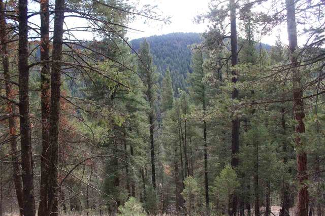 Lot 23 Bushwackers Gulley Pp3, Cloudcroft, NM 88317 (MLS #163774) :: Assist-2-Sell Buyers and Sellers Preferred Realty