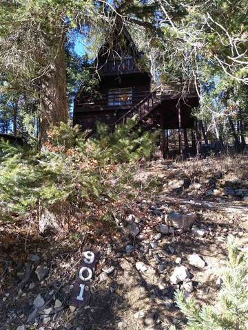 901 Maple Dr, Cloudcroft, NM 88317 (MLS #163782) :: Assist-2-Sell Buyers and Sellers Preferred Realty