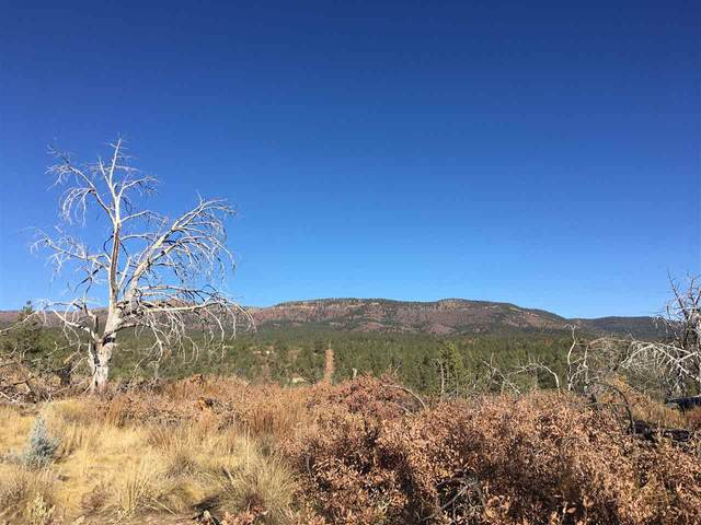 Pawnee Dr, Timberon, NM 88350 (MLS #163784) :: Assist-2-Sell Buyers and Sellers Preferred Realty