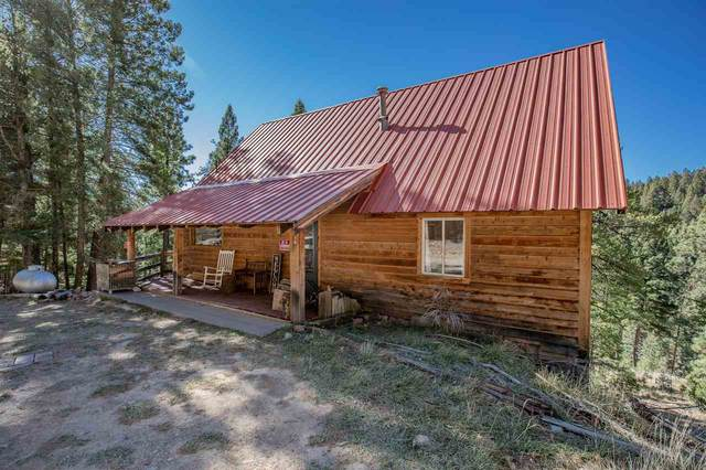 18 Forest View Rd #5, Cloudcroft, NM 88317 (MLS #163785) :: Assist-2-Sell Buyers and Sellers Preferred Realty