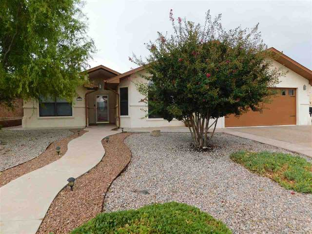 300 Cottonwood Dr, Alamogordo, NM 88310 (MLS #163789) :: Assist-2-Sell Buyers and Sellers Preferred Realty