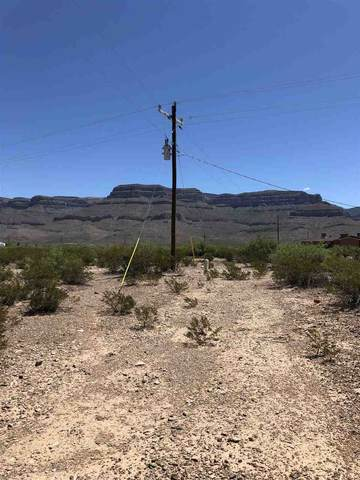 Address Not Published, Alamogordo, NM 88310 (MLS #163796) :: Assist-2-Sell Buyers and Sellers Preferred Realty