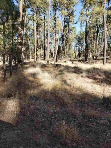 110 Bahamas Dr, Timberon, NM 88350 (MLS #163848) :: Assist-2-Sell Buyers and Sellers Preferred Realty