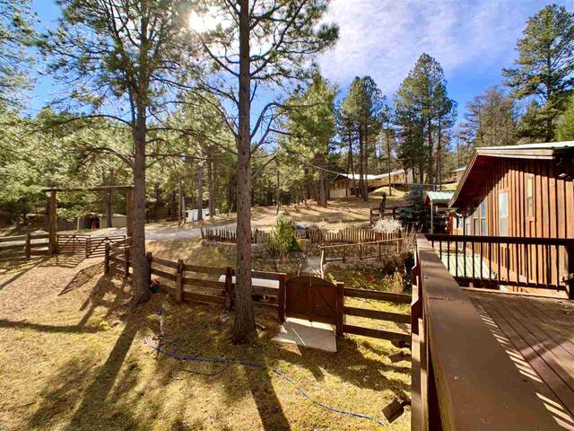 13 Friar Tuck, Mayhill, NM 88339 (MLS #163855) :: Assist-2-Sell Buyers and Sellers Preferred Realty