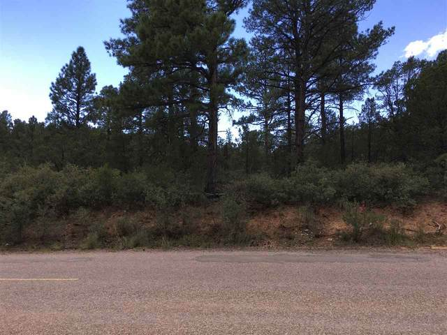 Sacramento Dr #3, Timberon, NM 88350 (MLS #163910) :: Assist-2-Sell Buyers and Sellers Preferred Realty