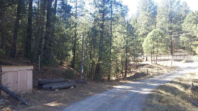 Cowan Rd, Mayhill, NM 88339 (MLS #163962) :: Assist-2-Sell Buyers and Sellers Preferred Realty