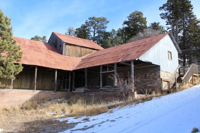 97 Mescalero Ave #0, Cloudcroft, NM 88317 (MLS #163971) :: Assist-2-Sell Buyers and Sellers Preferred Realty