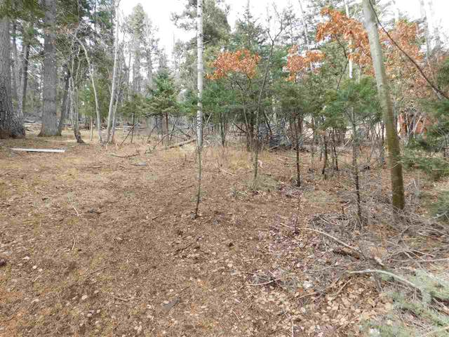 609 Sugar Pine Dr, Cloudcroft, NM 88317 (MLS #163980) :: Assist-2-Sell Buyers and Sellers Preferred Realty