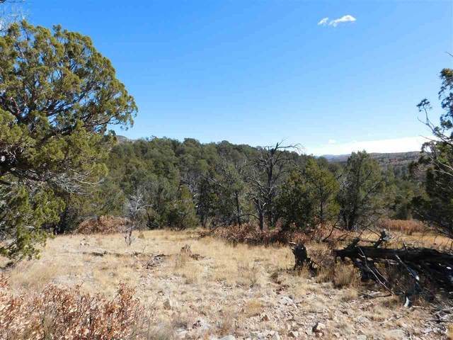Perch Dr, Timberon, NM 88350 (MLS #164063) :: Assist-2-Sell Buyers and Sellers Preferred Realty