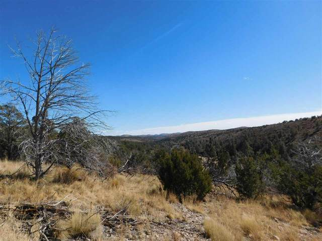 Fuerte Dr, Timberon, NM 88350 (MLS #164064) :: Assist-2-Sell Buyers and Sellers Preferred Realty
