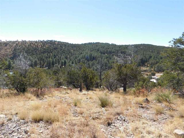 Fuerte Dr, Timberon, NM 88350 (MLS #164065) :: Assist-2-Sell Buyers and Sellers Preferred Realty