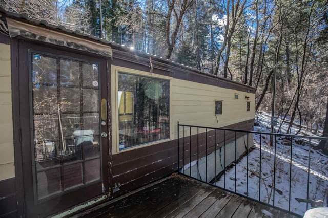 706 Coyote Ave, Cloudcroft, NM 88317 (MLS #164090) :: Assist-2-Sell Buyers and Sellers Preferred Realty