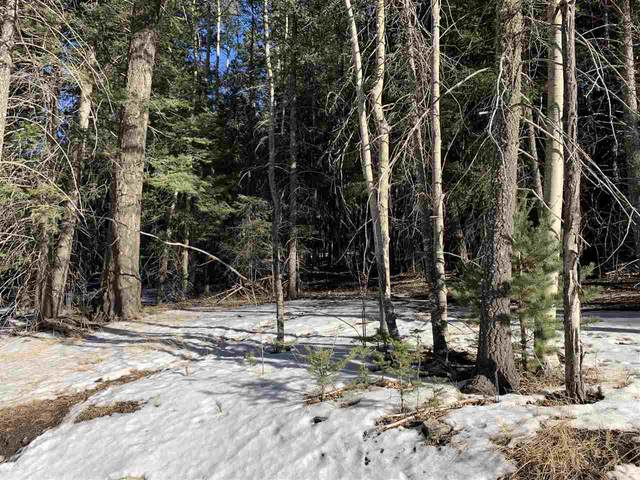 Balsam Ln, Cloudcroft, NM 88317 (MLS #164093) :: Assist-2-Sell Buyers and Sellers Preferred Realty