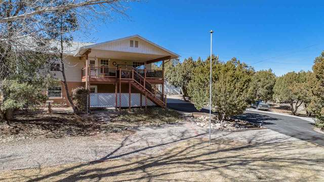 36 Westside Rd, High Rolls Mountain Park, NM 88325 (MLS #164098) :: Assist-2-Sell Buyers and Sellers Preferred Realty