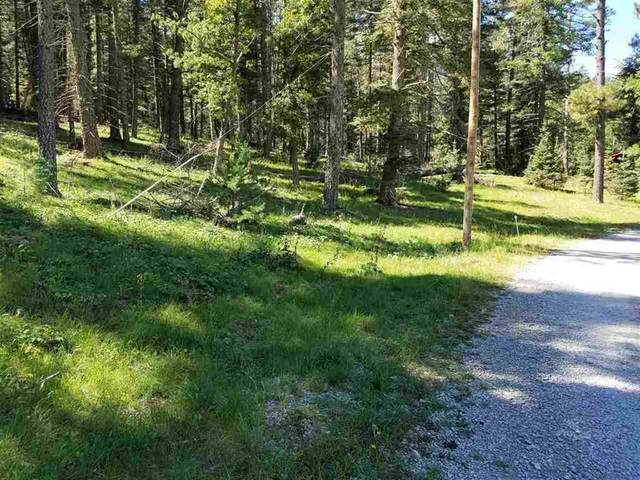 Lot 2 Spring Water, Cloudcroft, NM 88317 (MLS #164110) :: Assist-2-Sell Buyers and Sellers Preferred Realty