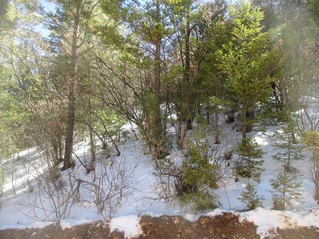 Address Not Published, High Rolls Mountain Park, NM 88325 (MLS #164138) :: Assist-2-Sell Buyers and Sellers Preferred Realty