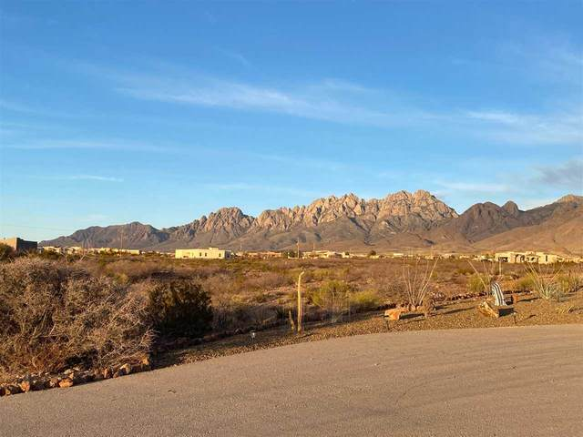 5093 Catamount Dr, Las Cruces, NM 88011 (MLS #164150) :: Assist-2-Sell Buyers and Sellers Preferred Realty
