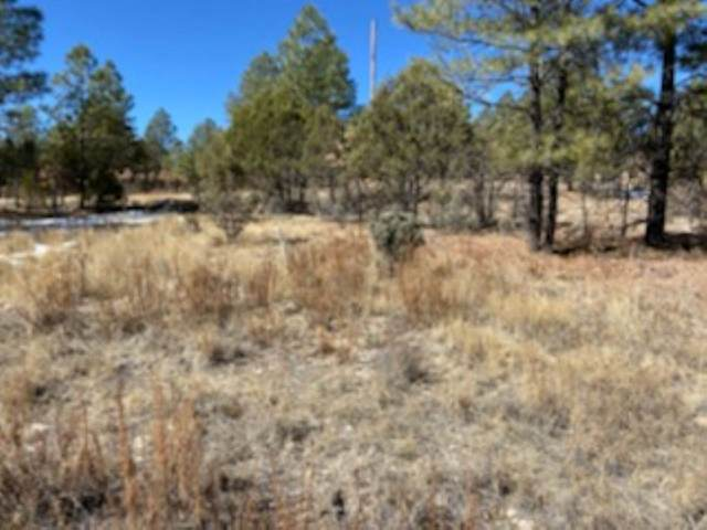 124 Winter Dr Gc5, Timberon, NM 88350 (MLS #164153) :: Assist-2-Sell Buyers and Sellers Preferred Realty