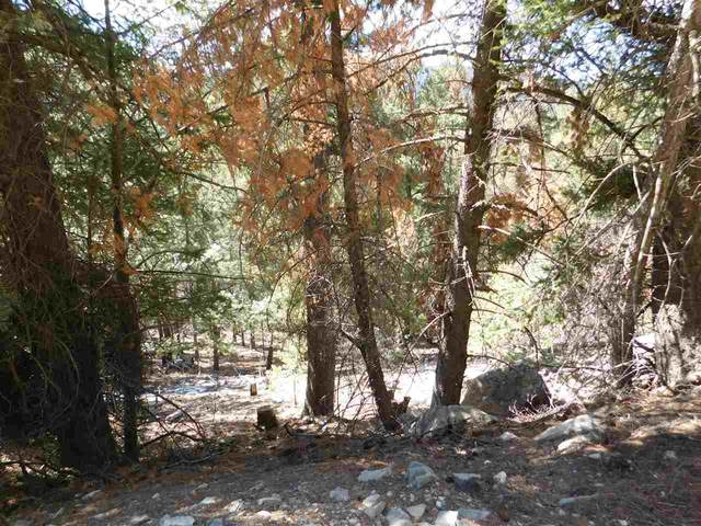Ridgecrest Dr, Alamogordo, NM 88310 (MLS #164199) :: Assist-2-Sell Buyers and Sellers Preferred Realty