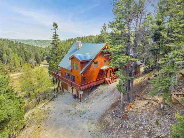 147 Clear Nite Rd, Cloudcroft, NM 88317 (MLS #164223) :: Assist-2-Sell Buyers and Sellers Preferred Realty