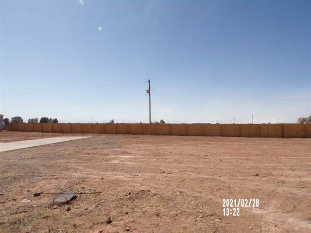 Lot 1 Running Indian Dr, La Luz, NM 88337 (MLS #164226) :: Assist-2-Sell Buyers and Sellers Preferred Realty