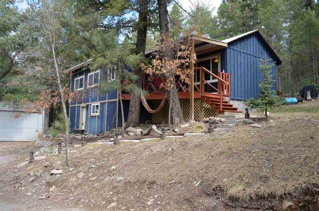 5 Turkey Trl #1, Cloudcroft, NM 88317 (MLS #164230) :: Assist-2-Sell Buyers and Sellers Preferred Realty