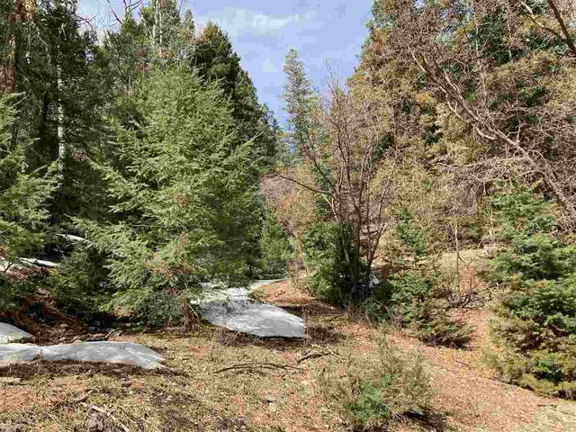 Raspberry Hill Rd, Cloudcroft, NM 88317 (MLS #164234) :: Assist-2-Sell Buyers and Sellers Preferred Realty