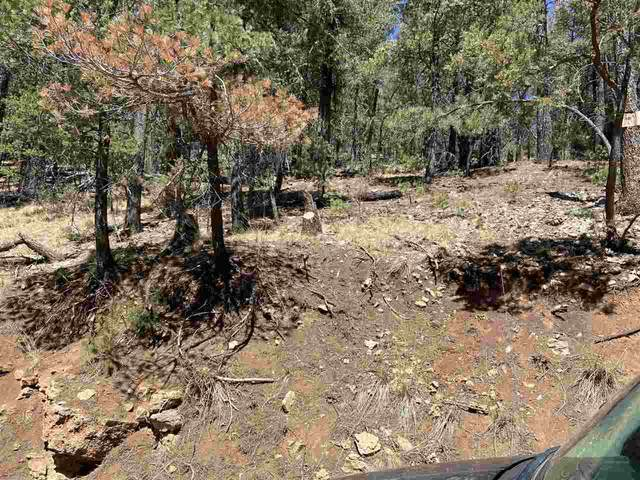Cloud Country Dr #2, Mayhill, NM 88339 (MLS #164307) :: Assist-2-Sell Buyers and Sellers Preferred Realty