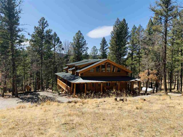 41 White Tail Run, Mayhill, NM 88339 (MLS #164311) :: Assist-2-Sell Buyers and Sellers Preferred Realty