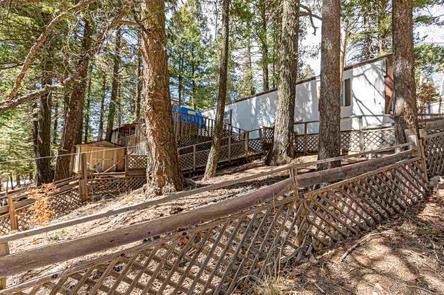 48 Silver Cloud Dr, Cloudcroft, NM 88317 (MLS #164313) :: Assist-2-Sell Buyers and Sellers Preferred Realty