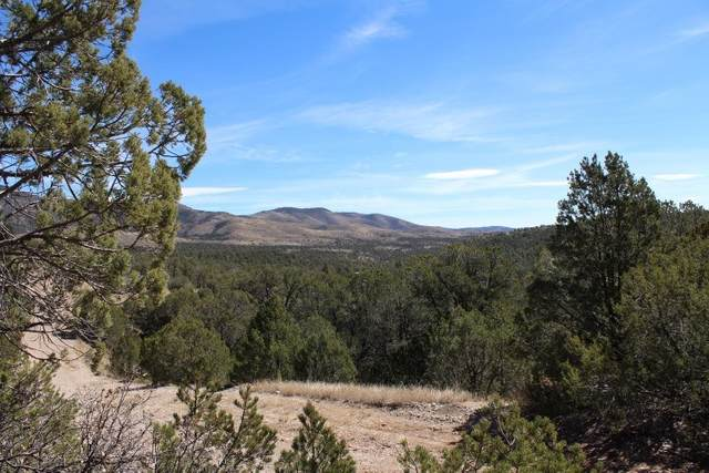 Lot 2 Calcite Dr #5, Timberon, NM 88350 (MLS #164316) :: Assist-2-Sell Buyers and Sellers Preferred Realty