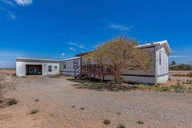 133 Tulie Gate Rd, Tularosa, NM 88352 (MLS #164402) :: Assist-2-Sell Buyers and Sellers Preferred Realty