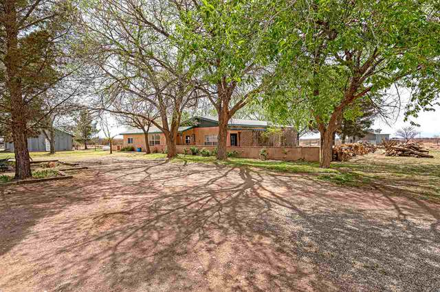 8 Raindance Rd, La Luz, NM 88337 (MLS #164415) :: Assist-2-Sell Buyers and Sellers Preferred Realty
