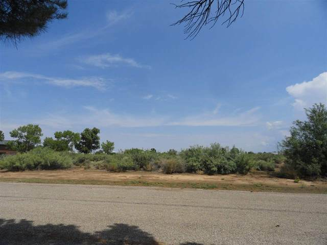 Lot 10 Camino Del Sur, Alamogordo, NM 88310 (MLS #164425) :: Assist-2-Sell Buyers and Sellers Preferred Realty