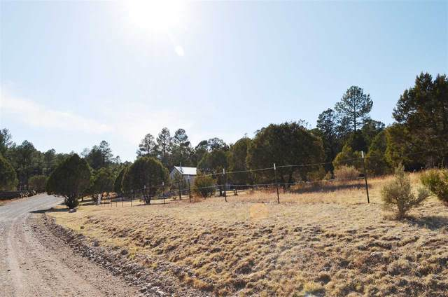 57 Calcite Dr #5, Timberon, NM 88350 (MLS #164437) :: Assist-2-Sell Buyers and Sellers Preferred Realty