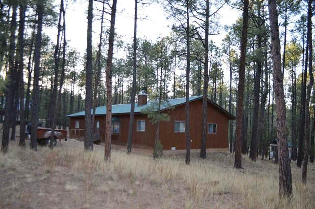 162 Balkans Dr #9, Timberon, NM 88350 (MLS #164438) :: Assist-2-Sell Buyers and Sellers Preferred Realty