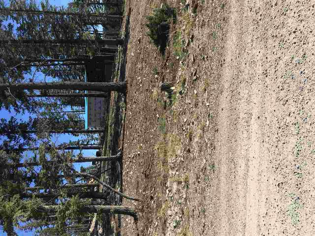1408 Rainmaker Lp, Cloudcroft, NM 88317 (MLS #164446) :: Assist-2-Sell Buyers and Sellers Preferred Realty