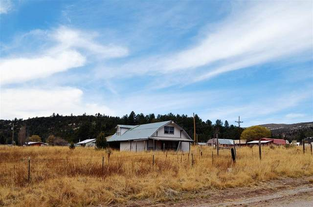 31 Canyon Dr, Mayhill, NM 88339 (MLS #164454) :: Assist-2-Sell Buyers and Sellers Preferred Realty