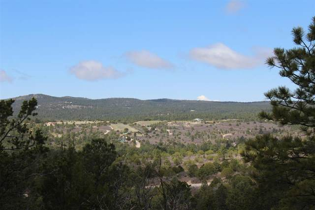 Lot 25 Spencer Dr #123, Timberon, NM 88350 (MLS #164466) :: Assist-2-Sell Buyers and Sellers Preferred Realty