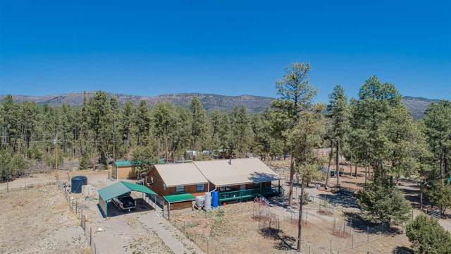 83 Dry Creek Dr, Timberon, NM 88350 (MLS #164472) :: Assist-2-Sell Buyers and Sellers Preferred Realty