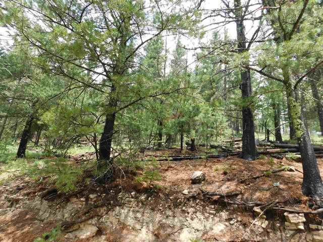 Bushwackers Gulley, Cloudcroft, NM 88317 (MLS #164473) :: Assist-2-Sell Buyers and Sellers Preferred Realty